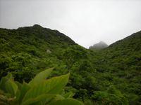 Adatara2010_trail